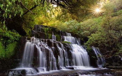 Purakaunui Falls – The star of absolution