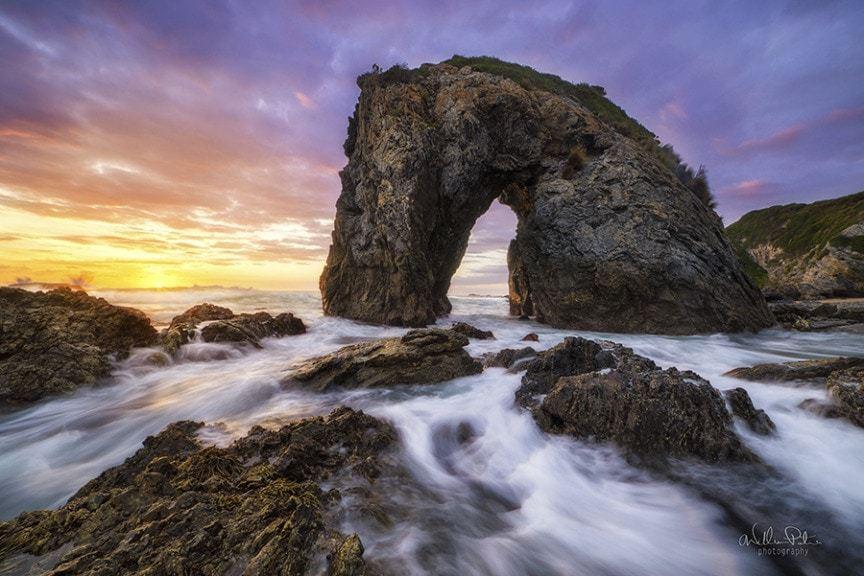 A horse shaped rock.