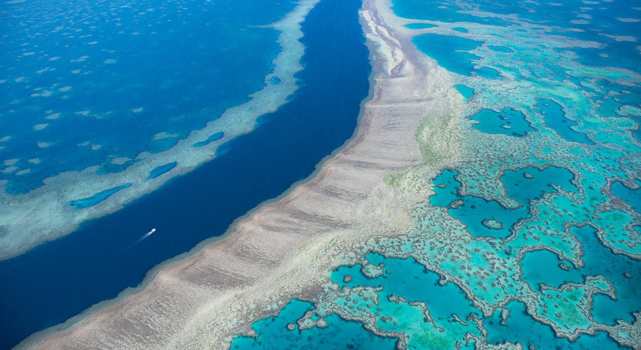 GreatBarrierReef_Patino