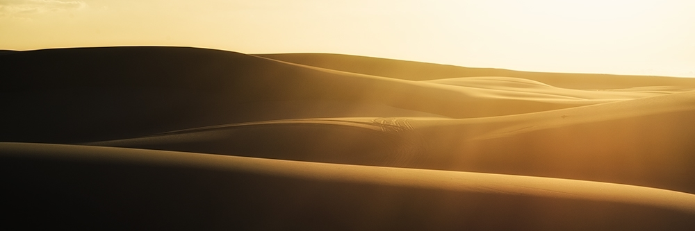 Sand dunes at sunet.