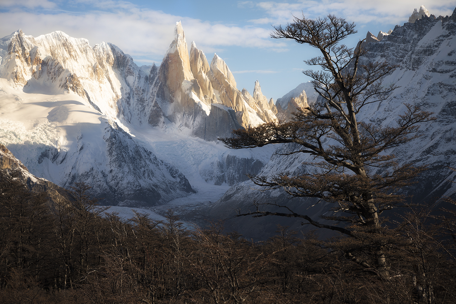 Cerro Torre winter