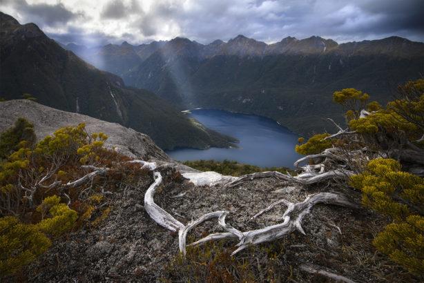 Lake Manapouri wilderness New Zealand