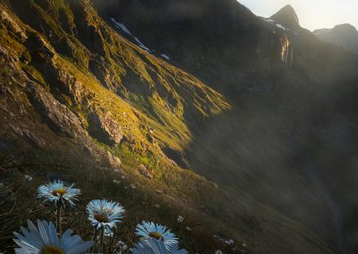 Fiordland-Wilderness-New-Zealand-William-Patino-copy