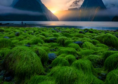 Milford-Sound-William-Patino-Photography