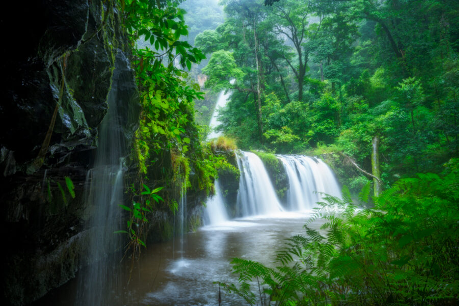 Lush waterfalls in the forest