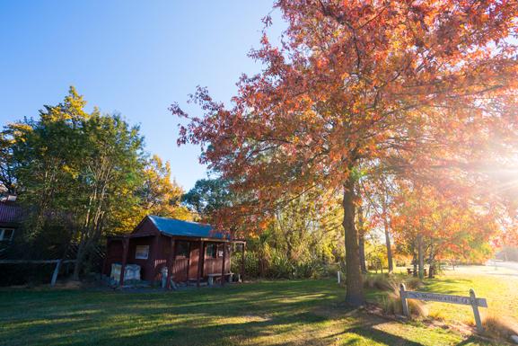 Burkes Pass Autumn Colours
