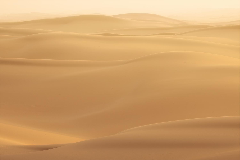 Sand dunes, Stockton NSW