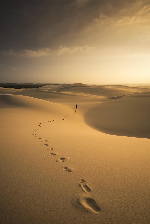 Stockton sand dunes, NSW