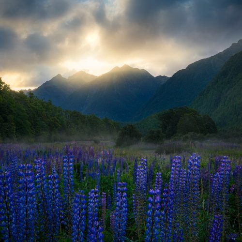 Mountains William Patino Photography
