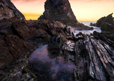 Sunrise, lone tree sea stack Bermagui