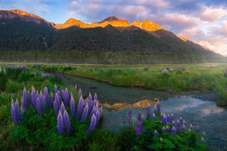Morning light on the mountains, Fiordland New Zealand