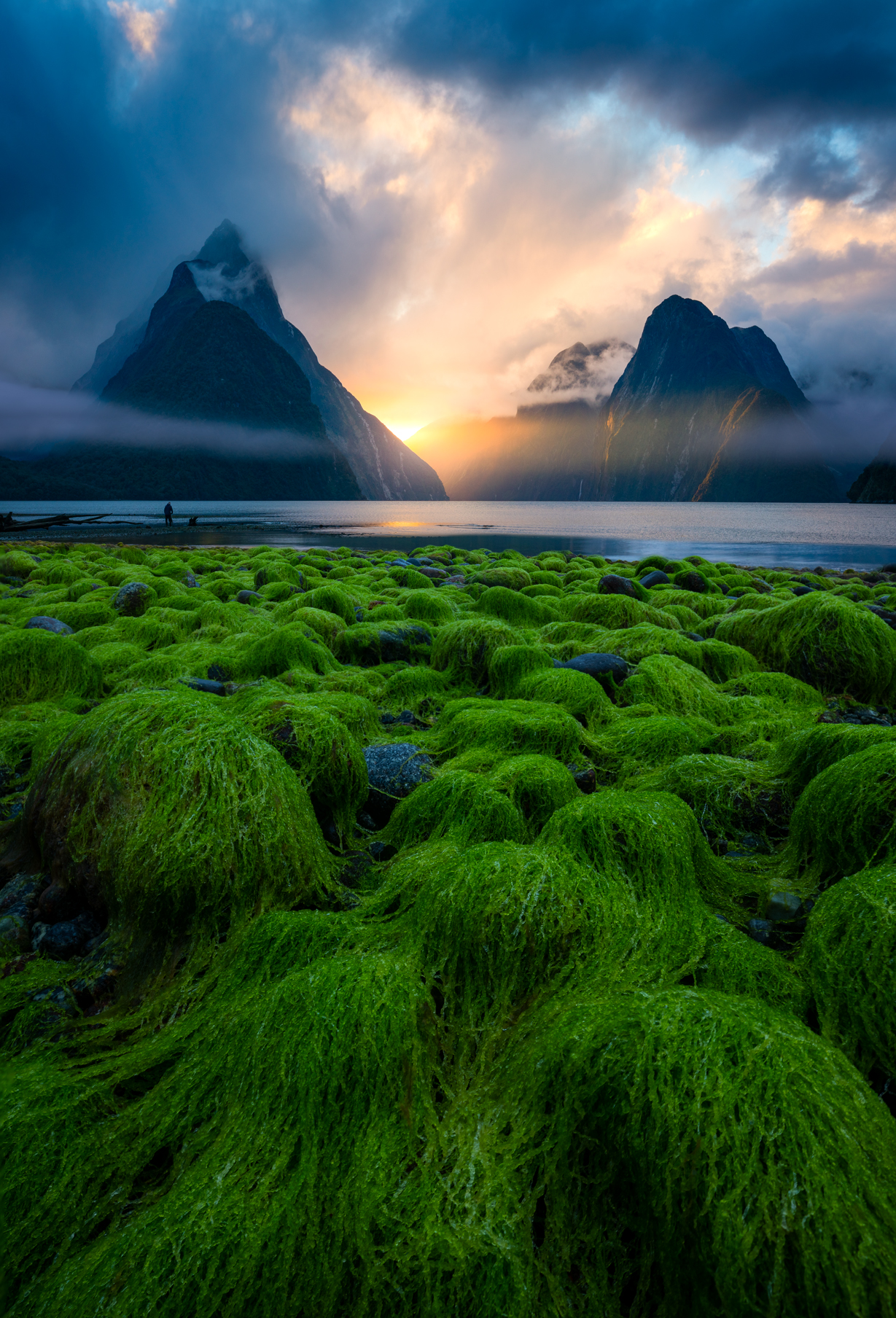 Sunset, Mitre Peak Milford Sound