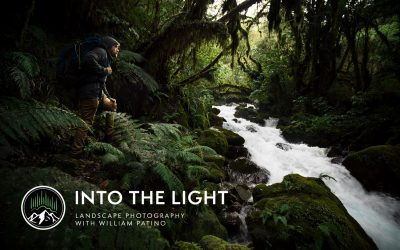 Into The Light – Online Photography Tutorials
