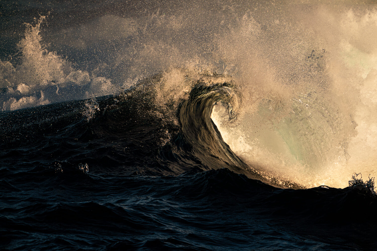 Exploding wave at sunset, NSW Australia