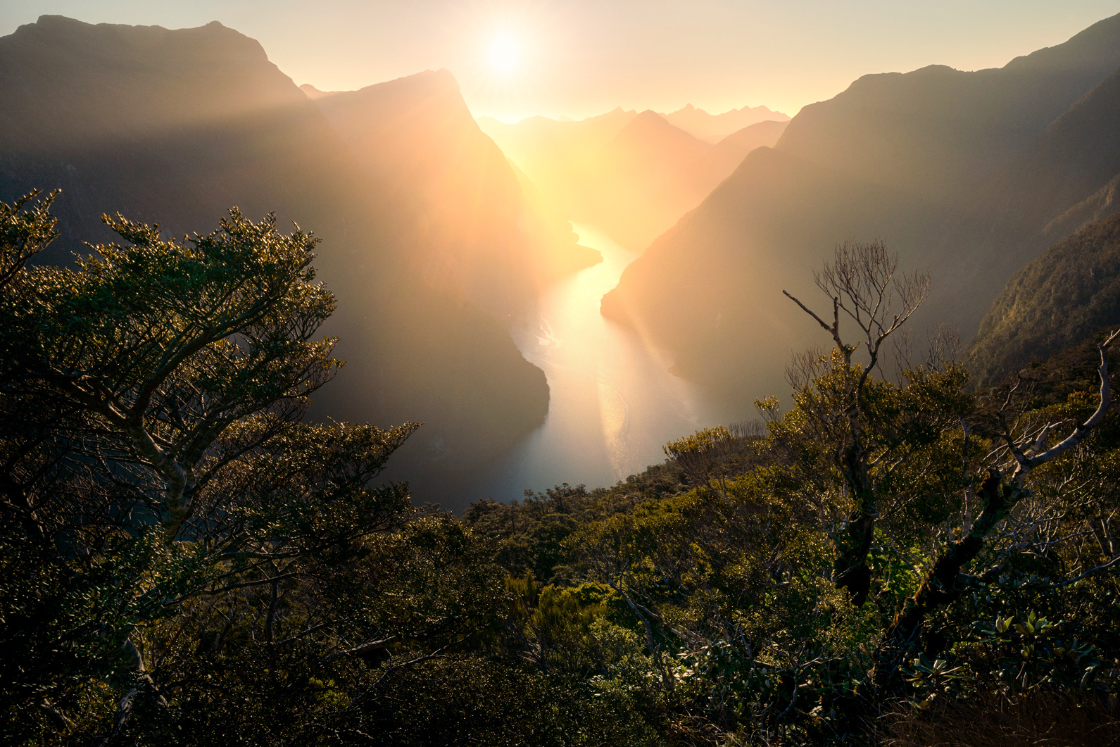 Fiordland Photography Tours