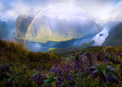 DoubtfulSound-Rainbow-WilliamPatino