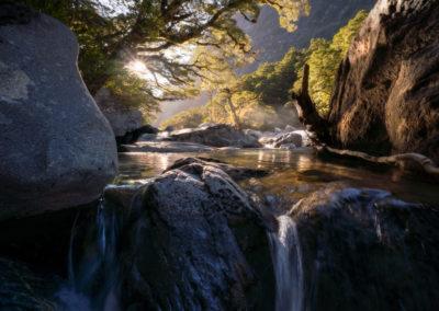 Hollyford-River-Sunlight