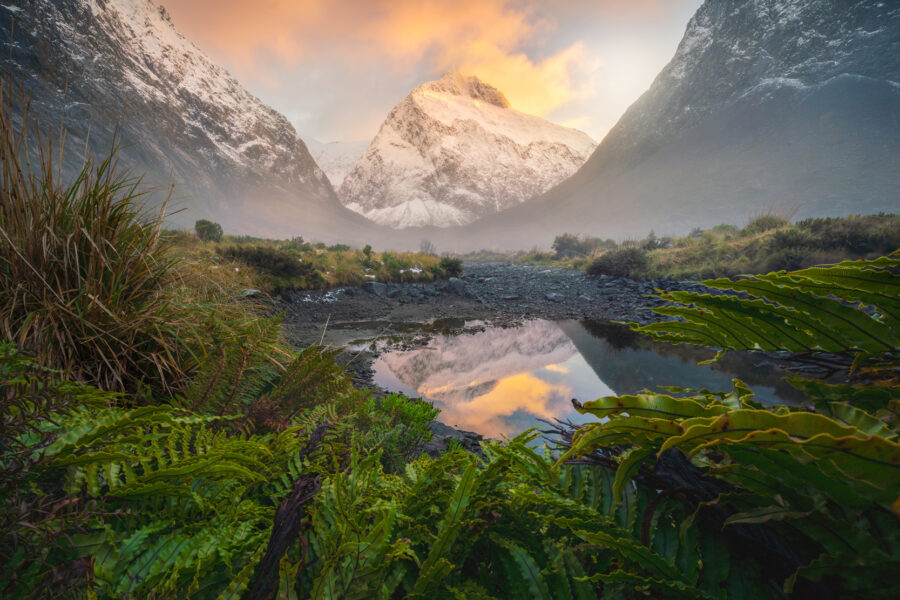 Sunrise light, Mt Talbot Fiordland. Photography by William Patino.