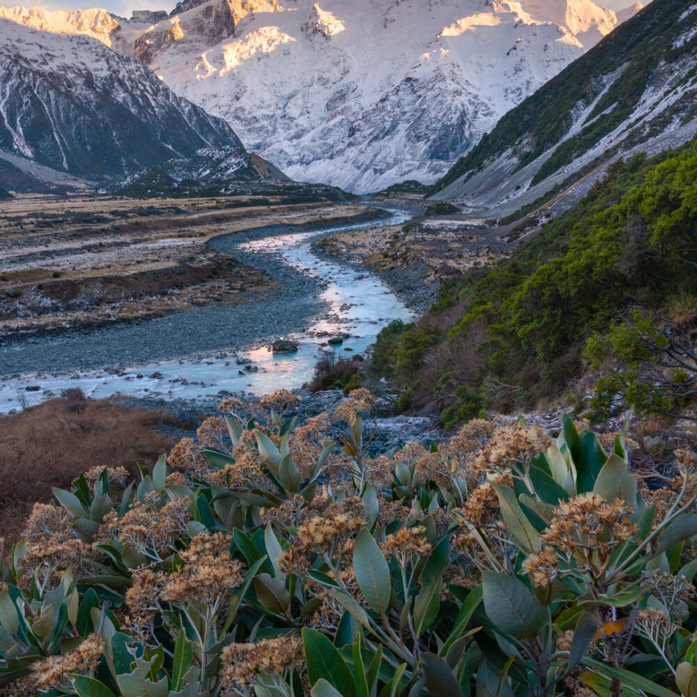 Glacial river leading to a snow capped mountain i nNew Zealand.
