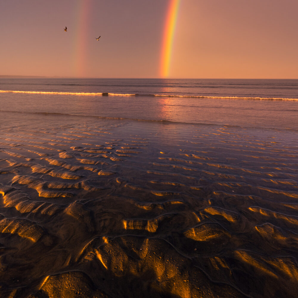Double rainbow and sea birds, New Zealand.