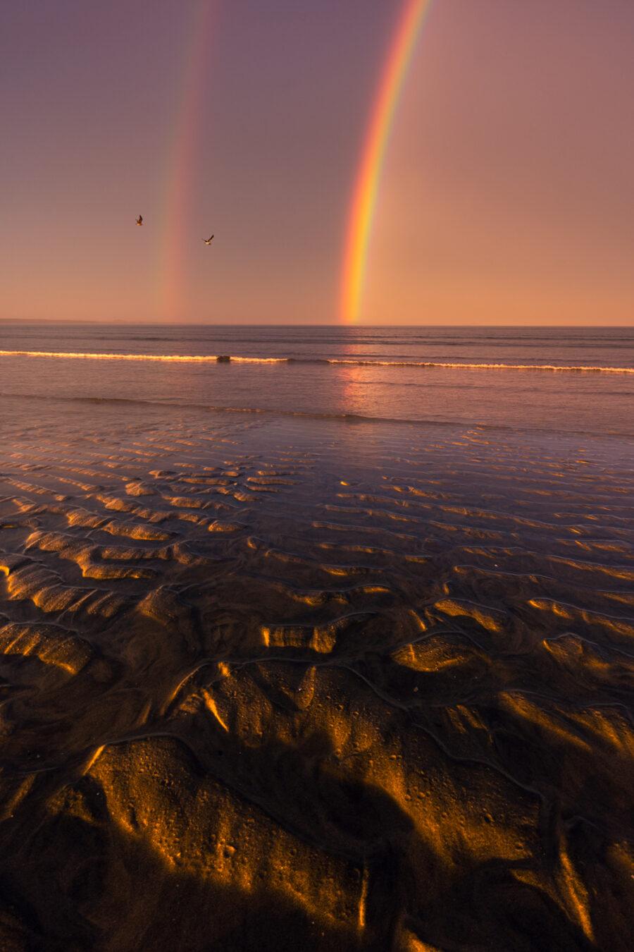 Double rainbow and sea birds, New Zealand.