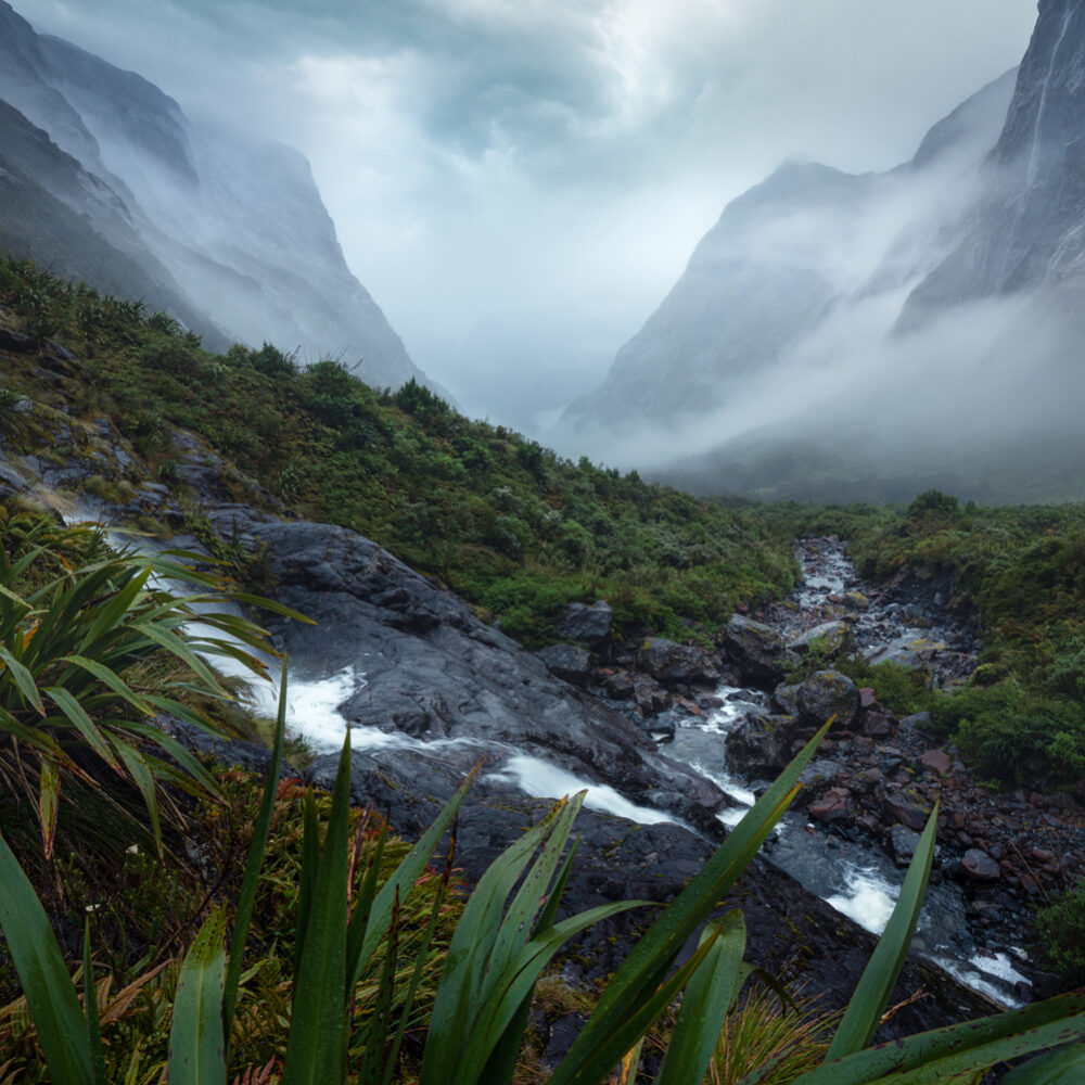 Fiordland rain and atmosphere, Copyright William Patino