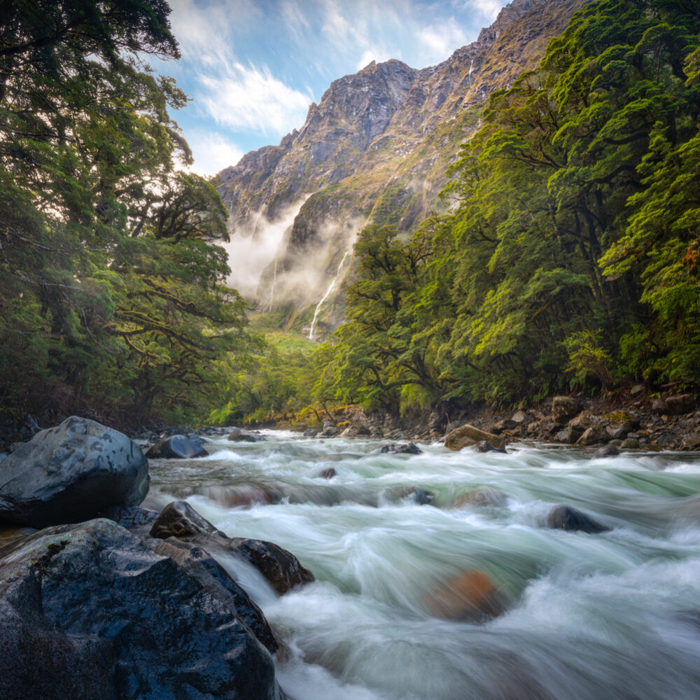 Fiordland mountain river Copyright William Patino