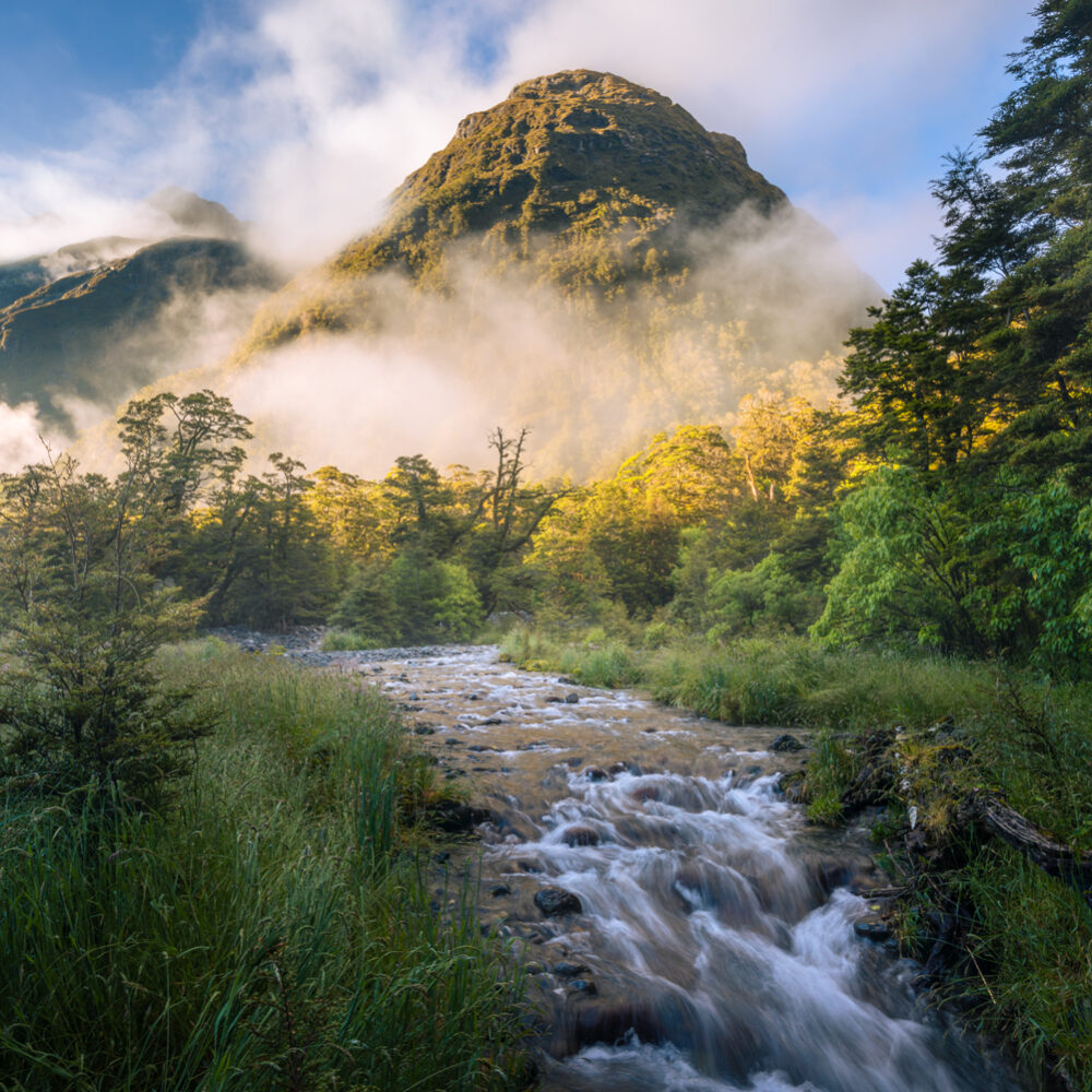 Fiordland atmosphere mountains Copyright William Patino
