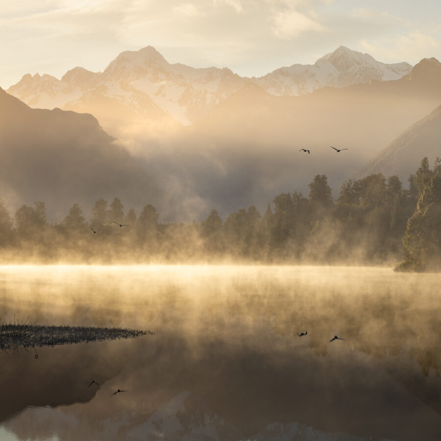 West Coast, Lake Matheson sunrise, Copyright William Patino