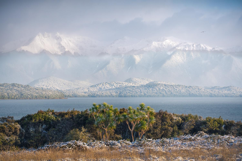 Fresh snow at Lake Te Anau, Copyright William Patino