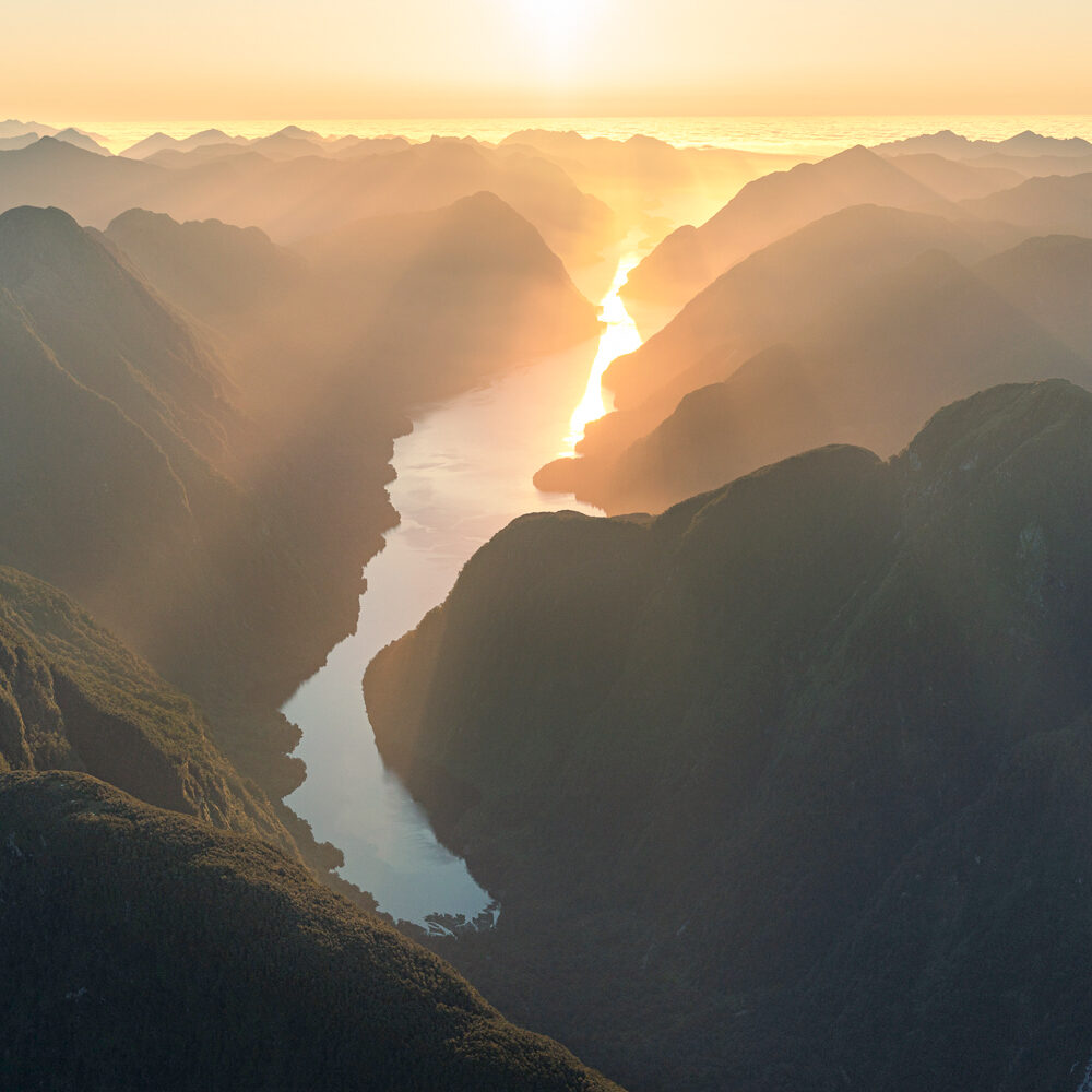 Vancouver Arm Fiordland, Copyright William Patino