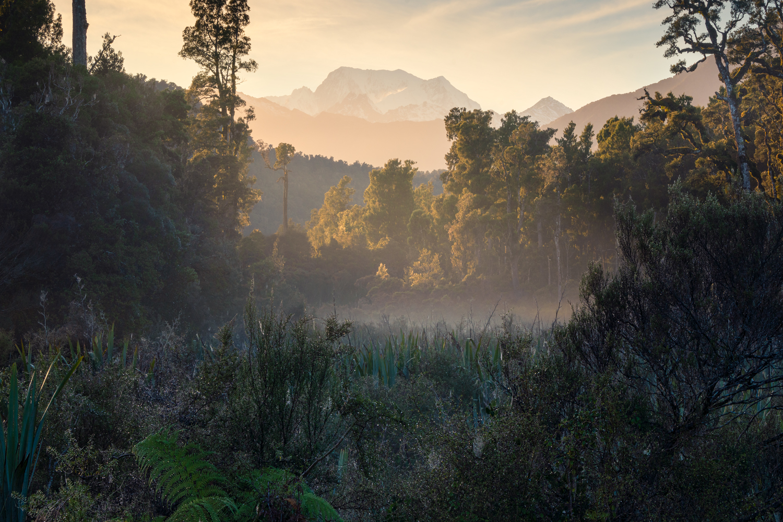Te Wahipounamu, Copyright William Patino, New Zealand Landscape Photographer