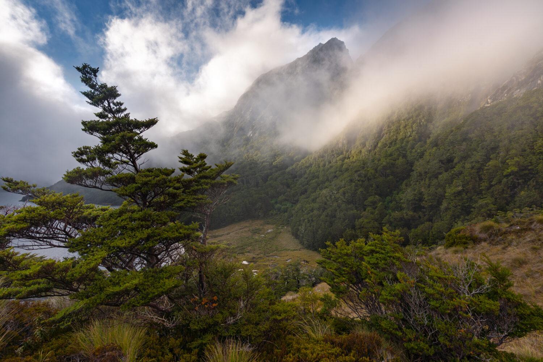 Norwest Lakes, Copyright William Patino, New Zealand Landscape Photographer