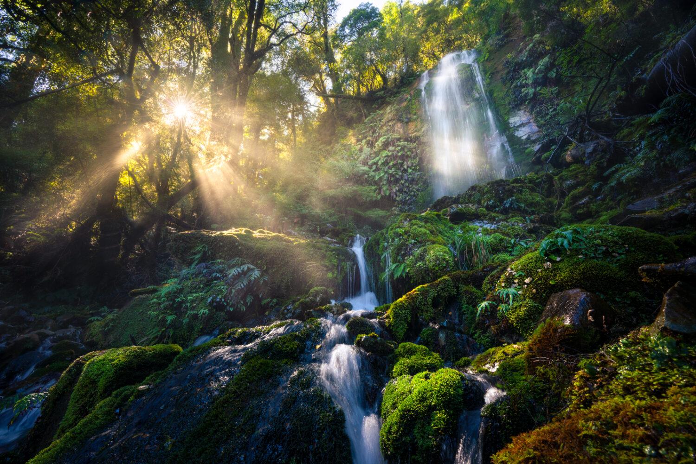 Fiordland Waterfall, Copyright William Patino, New Zealand Landscape Photographer