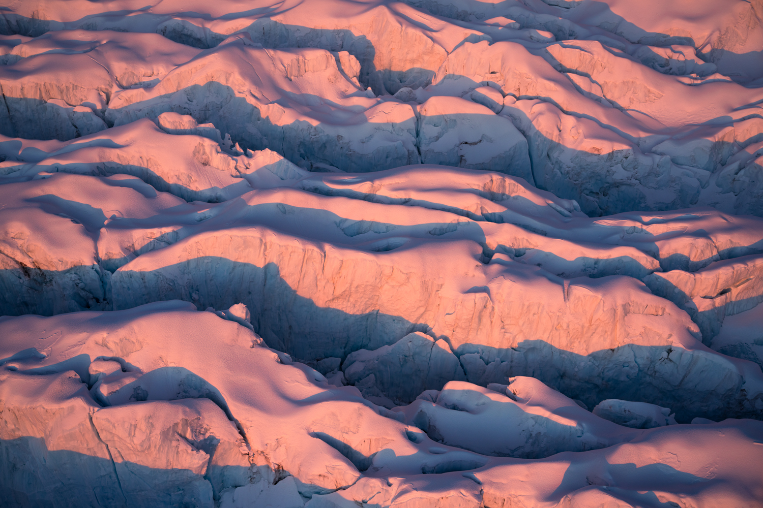 Pink ice in sunset light