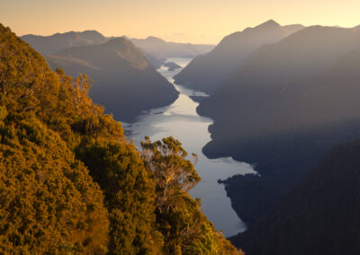 New Zealand fiord at sunset
